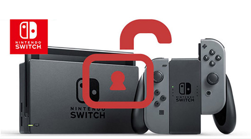 flash hack crack jailbreak nintendo switch paris